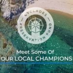 Meet our Local Champions!